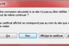 Windows affiche ici un message indiquant qu'un programme se connecte à un serveur externe sans certificat de sécurité valide.