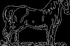 Fonctionnement d'un Cheval De Troie et Comment le repérer