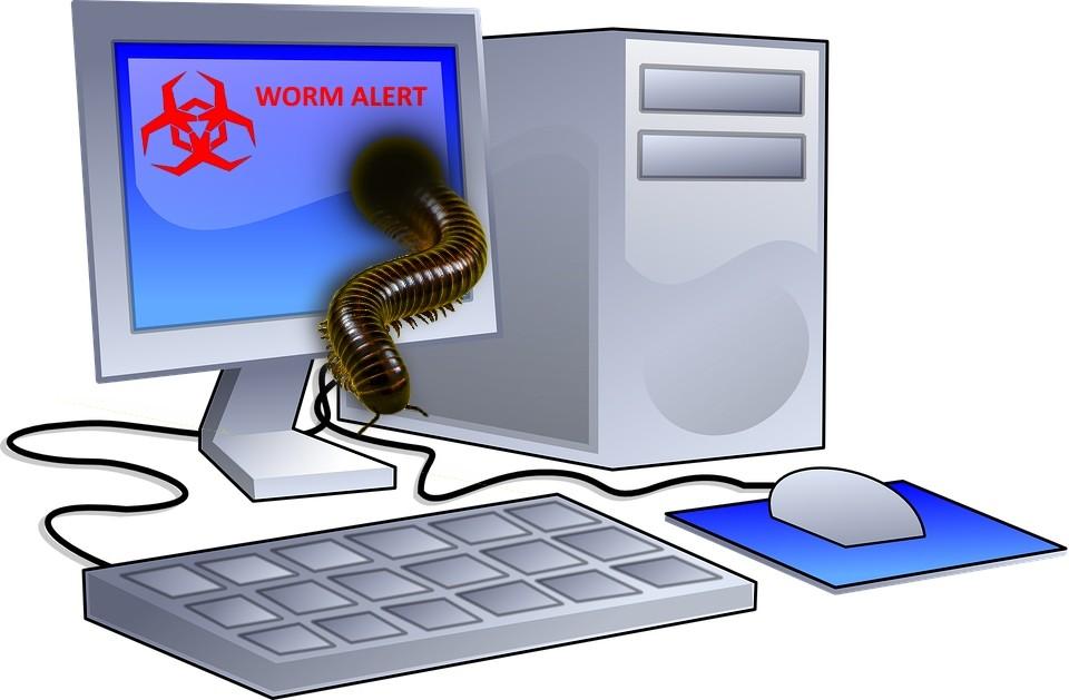 les vers informatiques