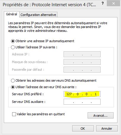 Image 51 propriétés TCP IP DNS 127.0.0.1