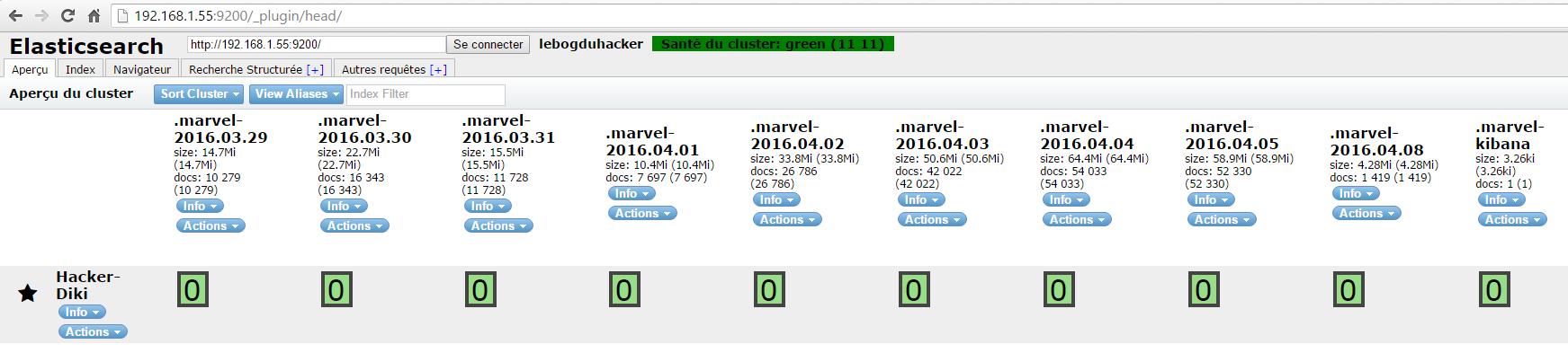 Installation 100 commande curl retour shards et index non assignés cluster jaune