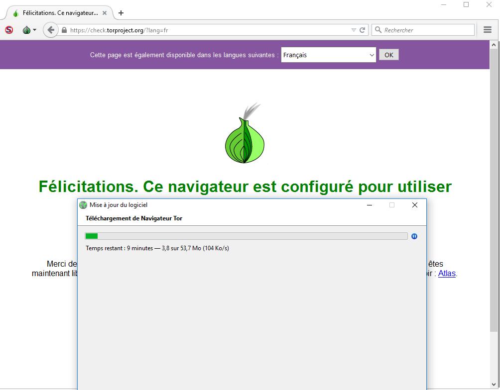 image 30 navigateur Tor