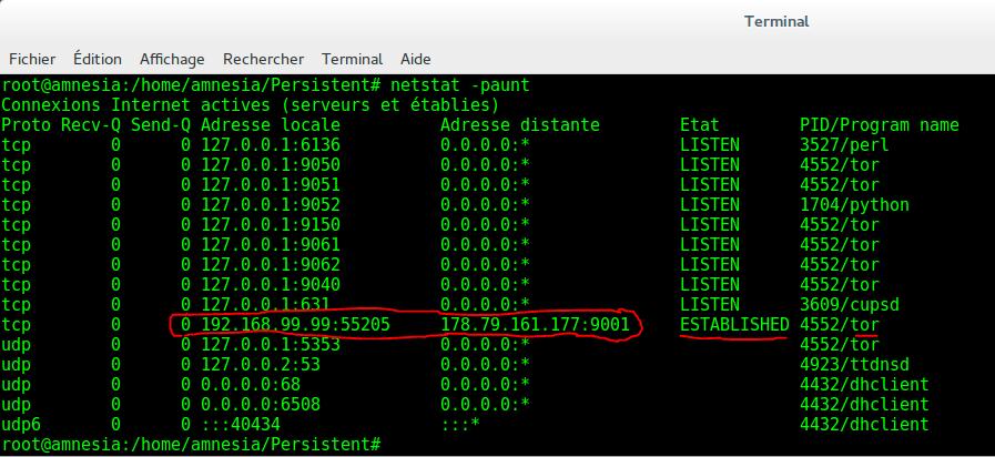 Image 35 1 netstat -paunt connexion active entre 192.168.99.99 nattée Tails et le noeud Tor